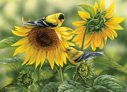 Sunflower and Goldfinches